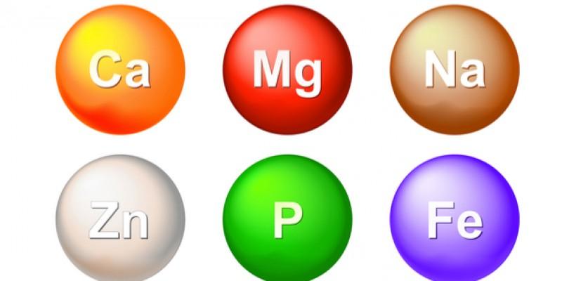 Oligo-elementen